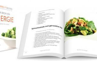 Supersnel Gezond kookboek Een bron van energie