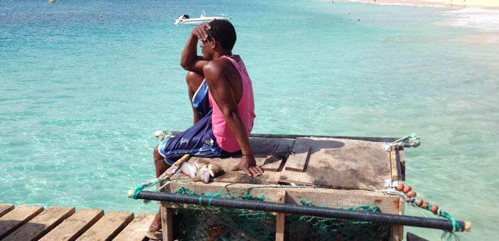 Vis keurmerk, een zee van keuze