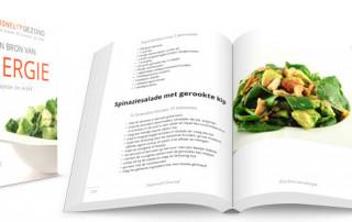 Supersnel Gezond Receptenboek